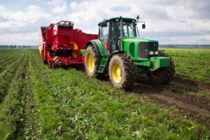 Какую отчетность сдают крестьянско-фермерские хозяйства